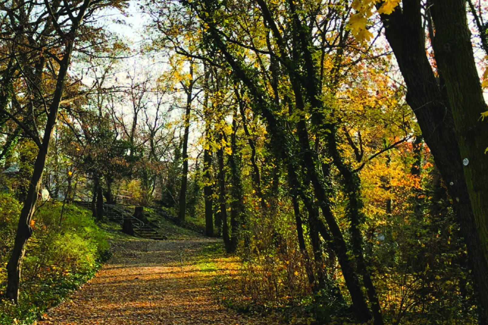 Johannisthaler Park